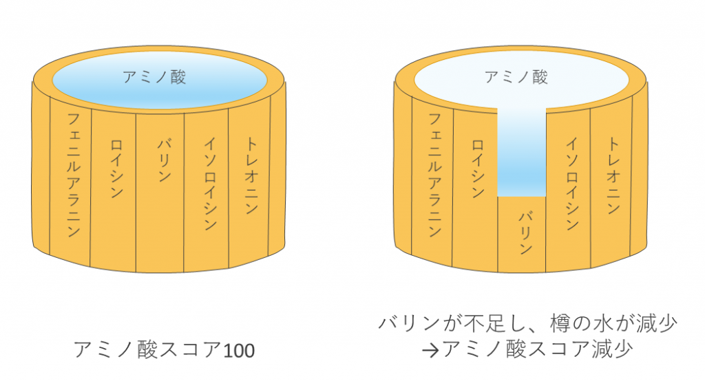 アミノ酸スコアが100であると、樽から水が減少することはありません。しかし、例えば、バリンが制限アミノ酸で、アミノ酸スコアが80であると、樽の水は80%まで減少してしまいます。